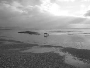 The Silver Lit Seafront at Lyme Regis, which Jane Austen Would Have Enjoyed - Jaunt with Jane
