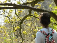 The Undercliff, Lyme Regis - Jaunt with Jane
