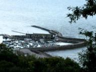 The Cobb from The Undercliff, Lyme Regis - Jaunt with Jane