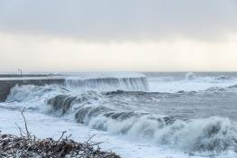 Stormy Cobb, Lyme Regis - Jaunt with Jane
