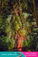 JWJ, Abbotsbury Subtropical Gardens - floodlit 18_10_15-01 (1000px)