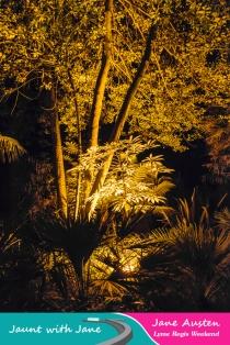 JWJ, Abbotsbury Subtropical Gardens - floodlit 18_10_15-02 (1000px)
