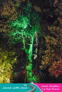 JWJ, Abbotsbury Subtropical Gardens - floodlit 18_10_15-03 (1000px)