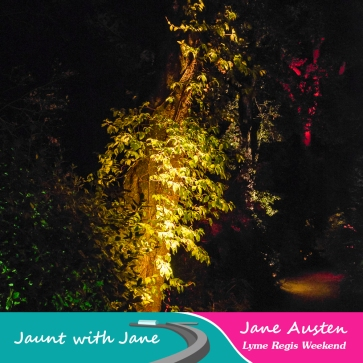 JWJ, Abbotsbury Subtropical Gardens - floodlit 18_10_15-13 (1000px)