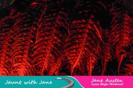 JWJ, Abbotsbury Subtropical Gardens - floodlit 18_10_15-15 (1000px)