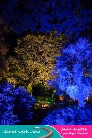 JWJ, Abbotsbury Subtropical Gardens - floodlit 18_10_15-38 (1000px)