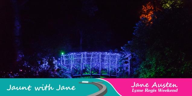 JWJ, Abbotsbury Subtropical Gardens - floodlit 18_10_15-40 (1000px)