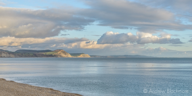 Evening sun on Golden Cap from Sundial House, Lyme Regis 22_11_15 (1000px)